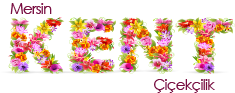 Anasayfa, mersin kent çiçek, pozcuda, mezitlide, toroslarda çiçekçi