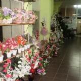 Foto Galeri, mersin kent çiçek, pozcuda, mezitlide, toroslarda çiçekçi