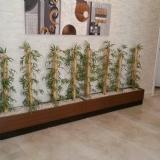 Kısa bambular