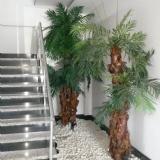 palmiye dekor
